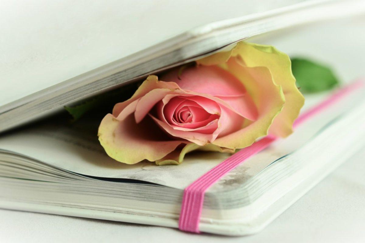 Versos de amor para compartir