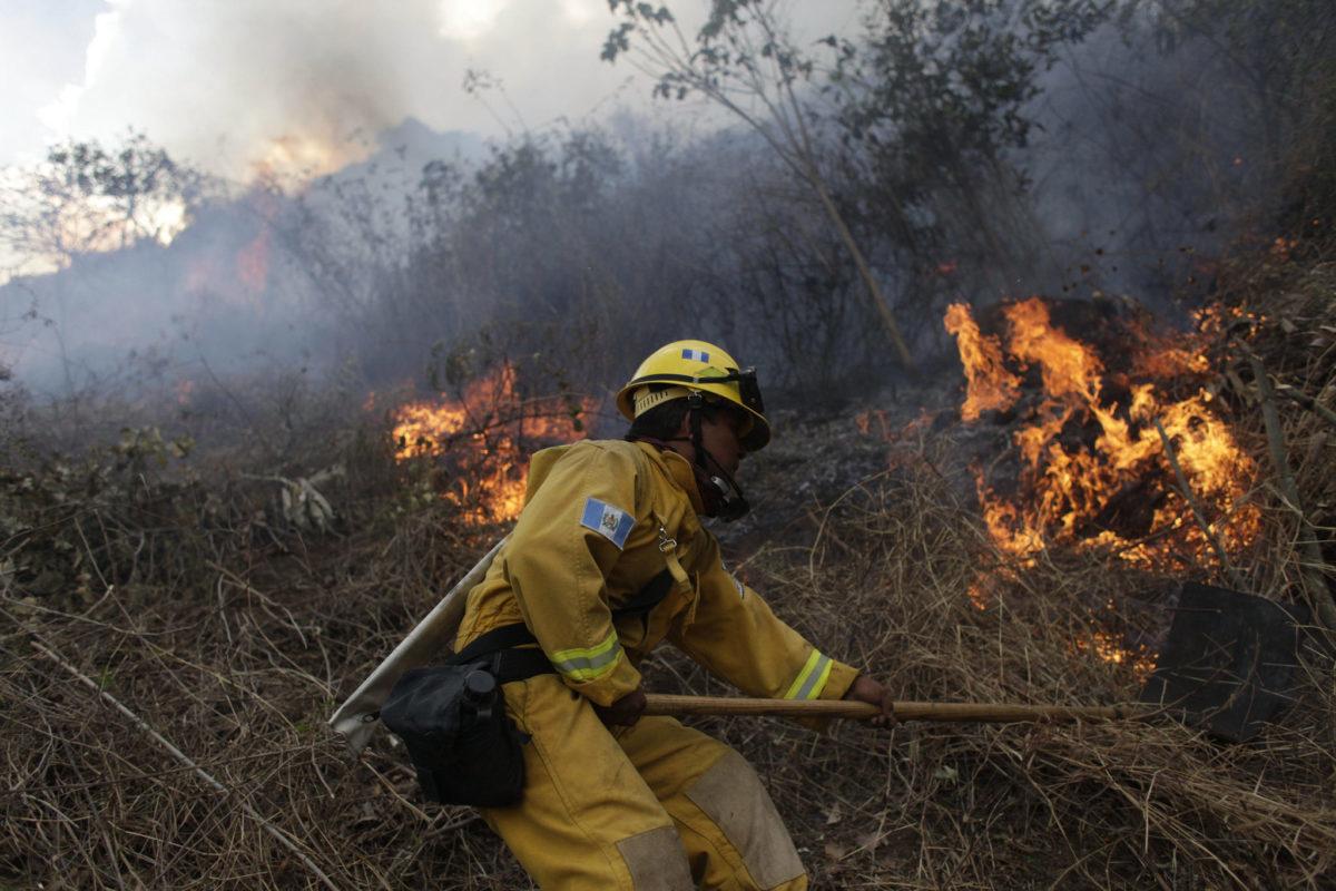 Incendios han afectado 75 hectáreas