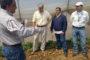EE. UU. apoya agricultura de la región