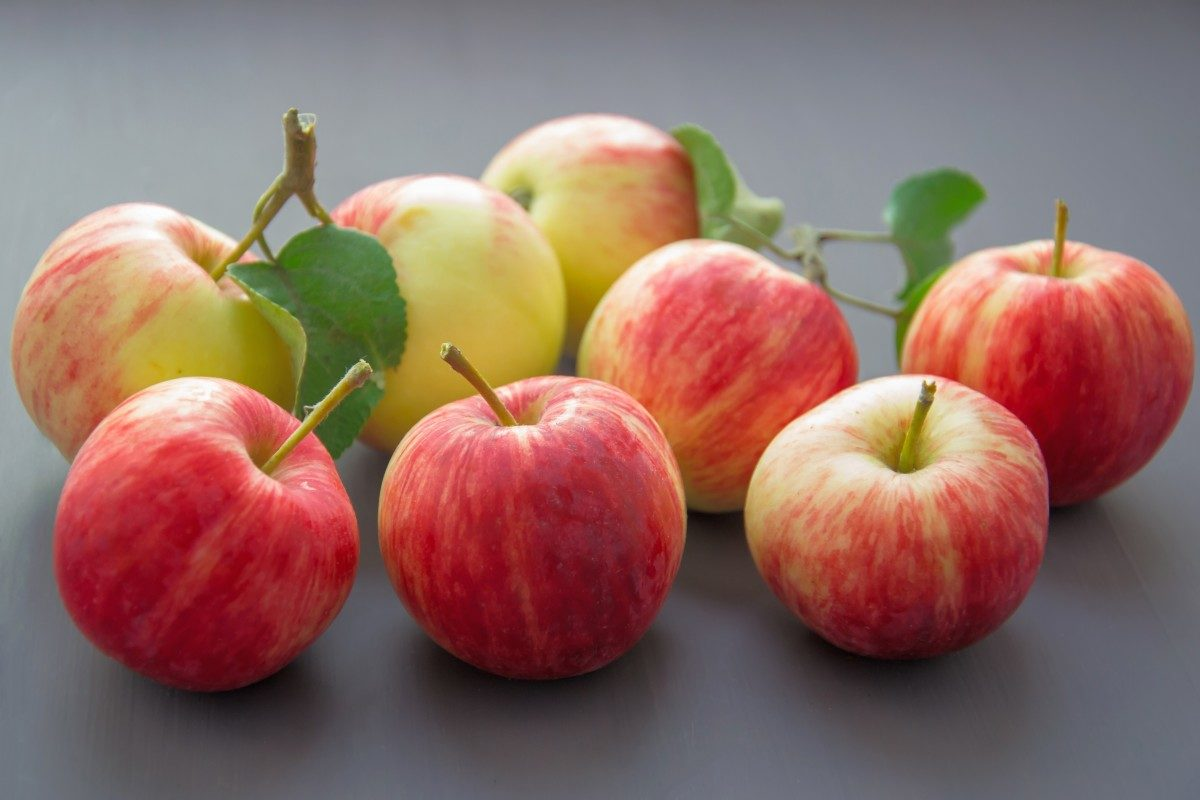 5 alimentos saludables que puedes consumir en el día