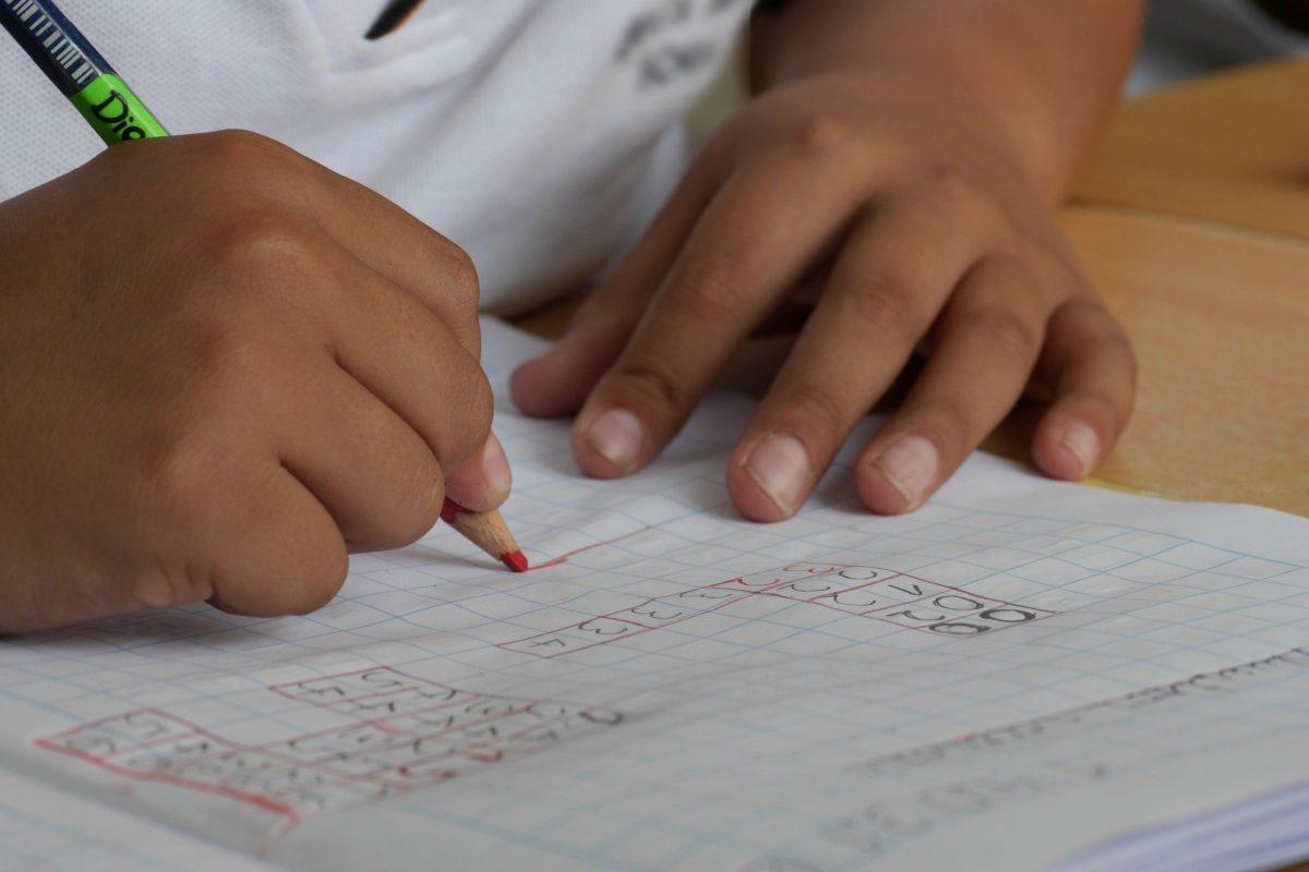 Promedio de educación en el país es de 4.9 años