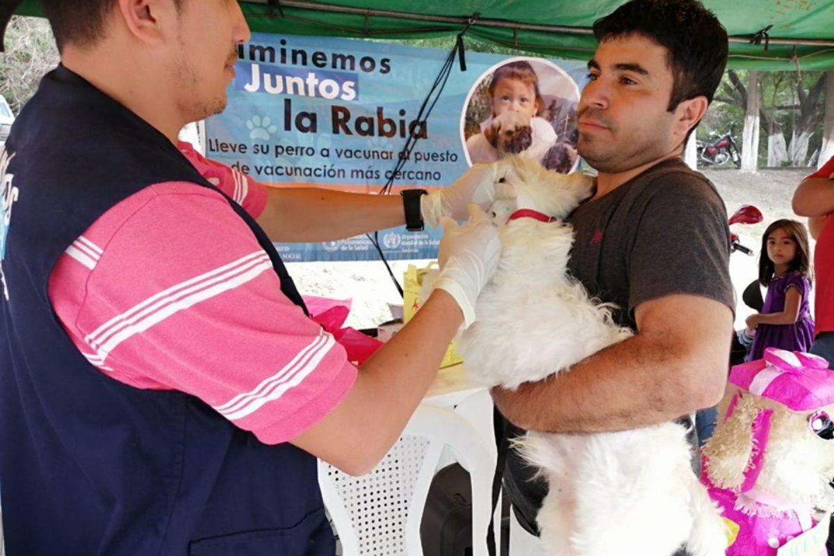 Infórmate dónde vacunar hoy a tu perro o gato