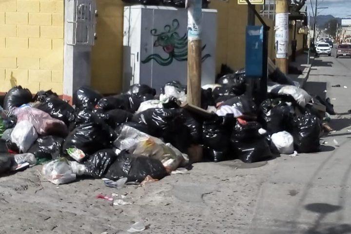 14,500 toneladas de basura se generan en el departamento cada mes