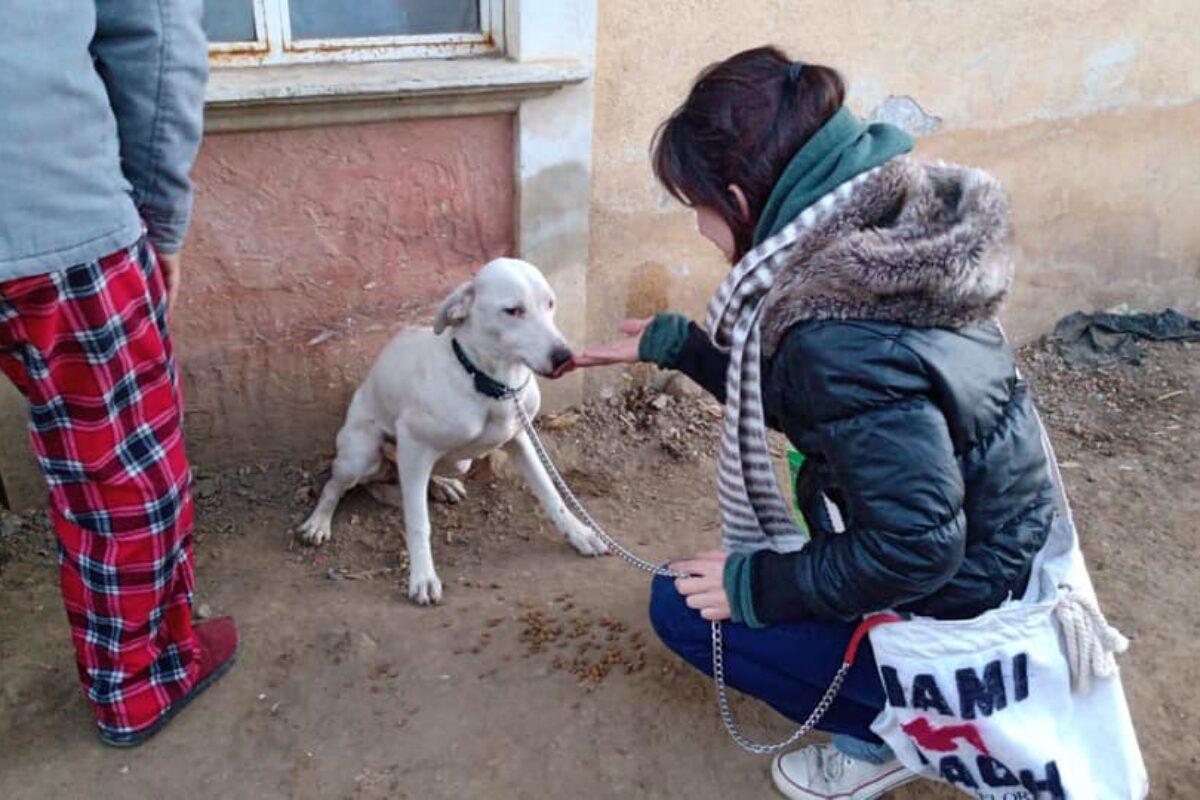 FOTOS   Siena se encuentra con Elisa María