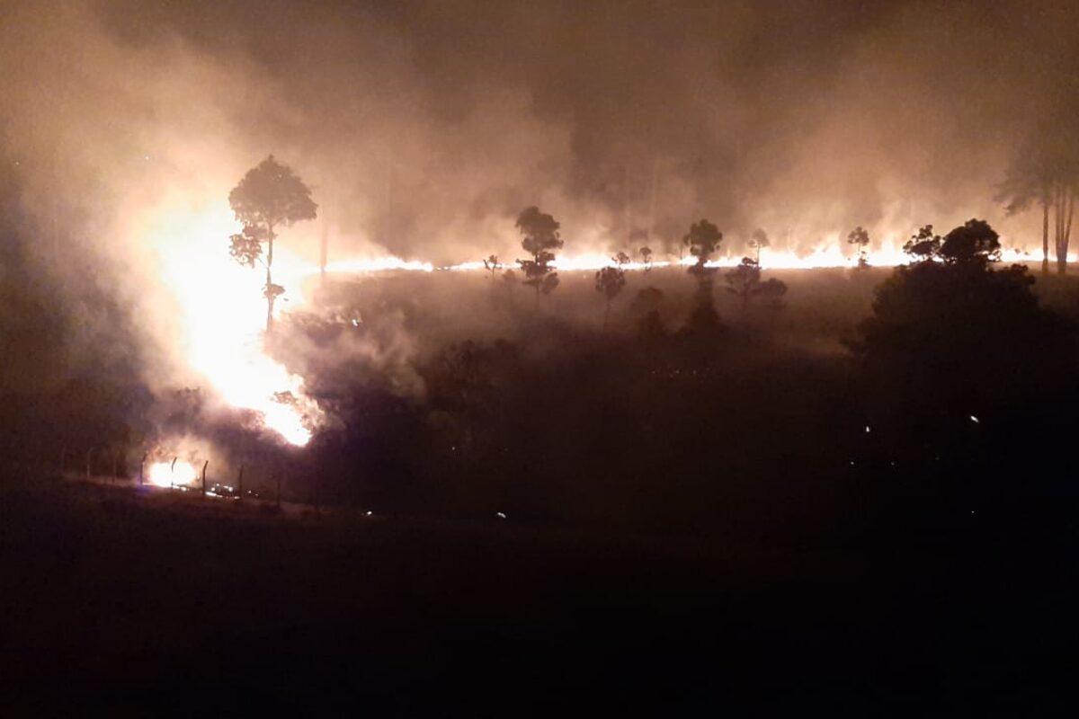 Unas tres hectáreas dañadas por incendio forestal en Cantel