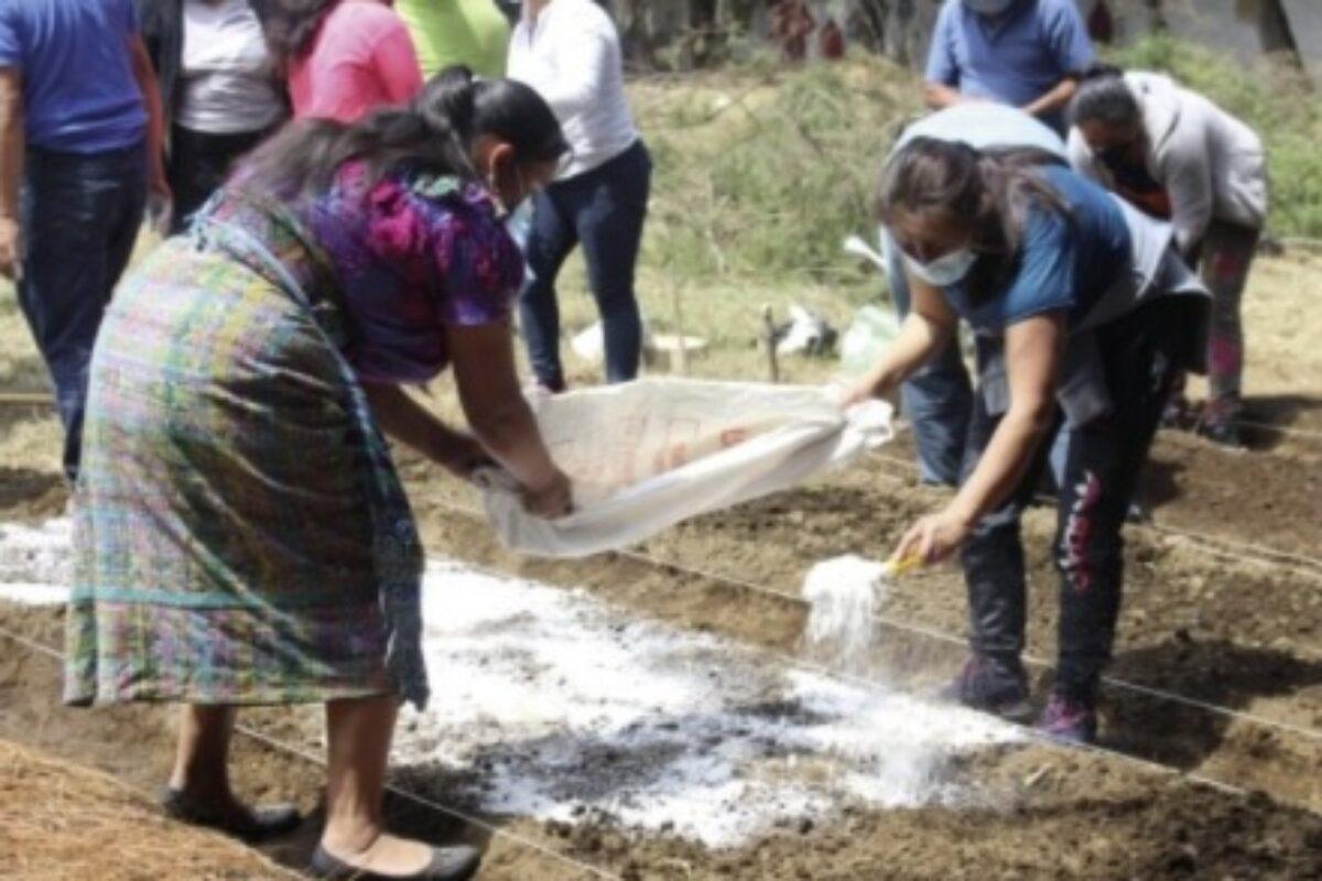 Capacitan a agricultores del Valle de Palajunoj sobre el uso de abono orgánico